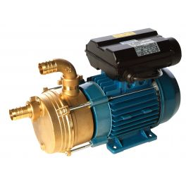 35 - 260 L/min Surface Transfer Pump (ENM/ENT)